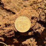 Simplex Dedektörümle Hızlı Bir Altın Para Avı