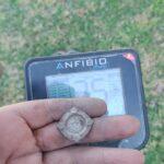 Anfibio Multi Dedektörle Bulunanlar - 1