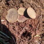 Simplex Dedektörle İlk İnce Bozuk Paramı Buldum - 1